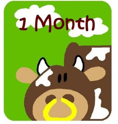 Square Farm Animals Monthly Onesie Stickers